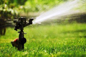 Автоматический полив газона в Испании с использованием диффузора